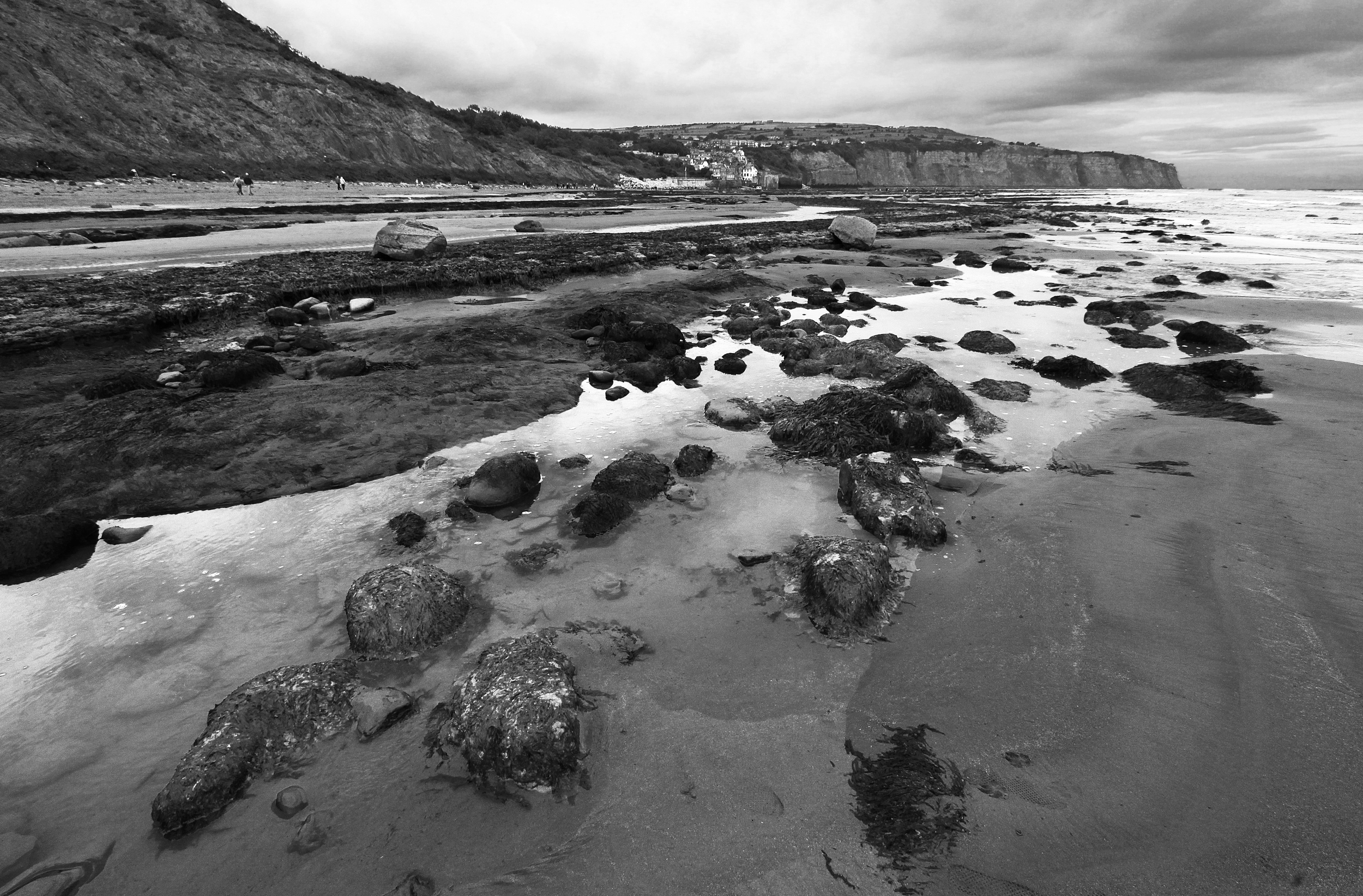 Monochrome Bay