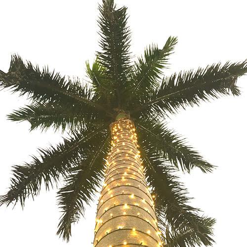 Sarah_Scales_Design_Studio_Travels_Palm_Beach_West_Palm_Florida_6.jpg
