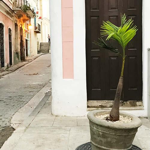 Sarah_Scales_Design_Studio_Travels_Cuba_Havana_Vieja_10.jpg