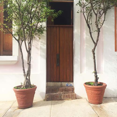 Sarah_Scales_Design_Studio_Travels_Old_San_Juan_Puerto_Rico_Exteriors_22.jpg