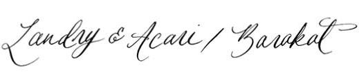 Landry Acari Baraket- Sarah Scales Design Studio - Residential Interior Design Boston Cape Cod.jpg