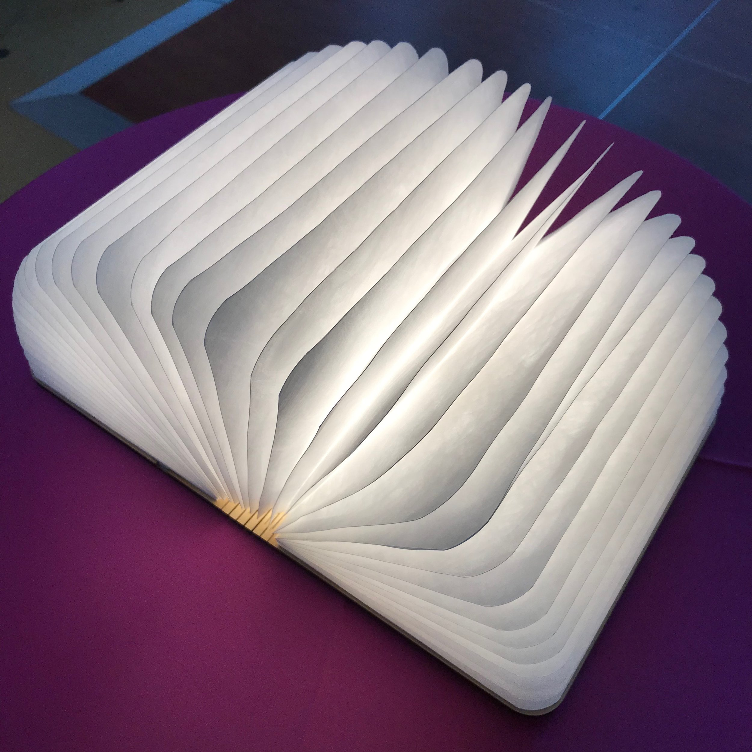 Book lights by DJ Jim Cerone