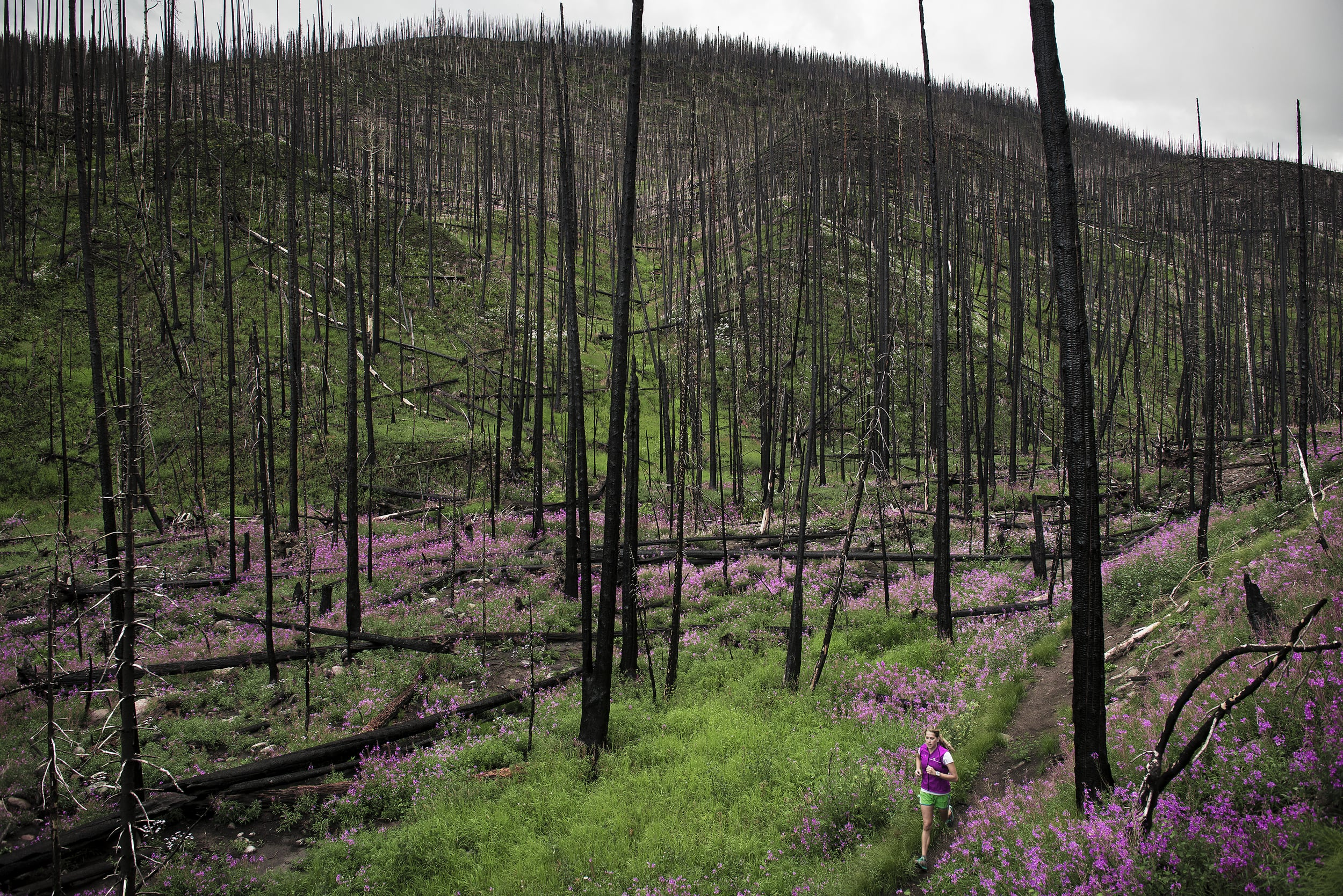 A female athlete running next to Hope Creek in a wildfire burn area