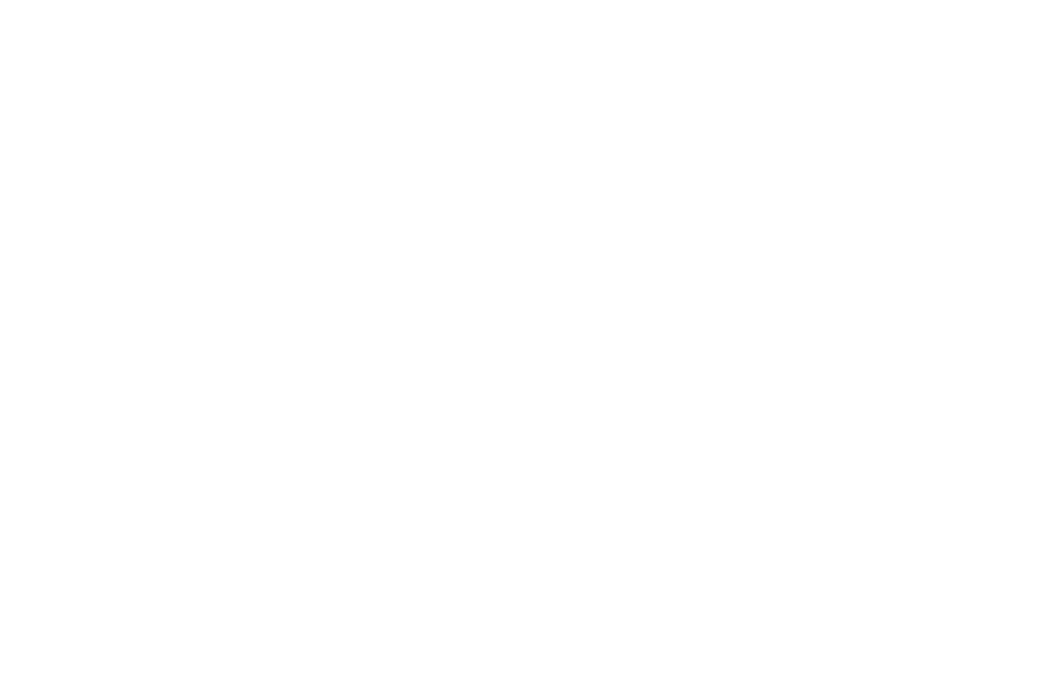 mytek white.png