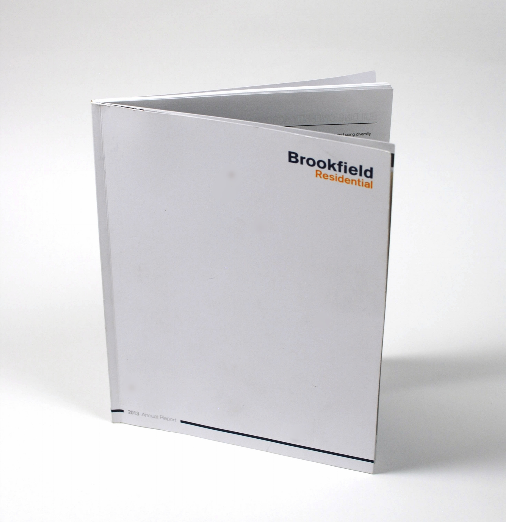 Brookfield Residential 2013 Annual Report