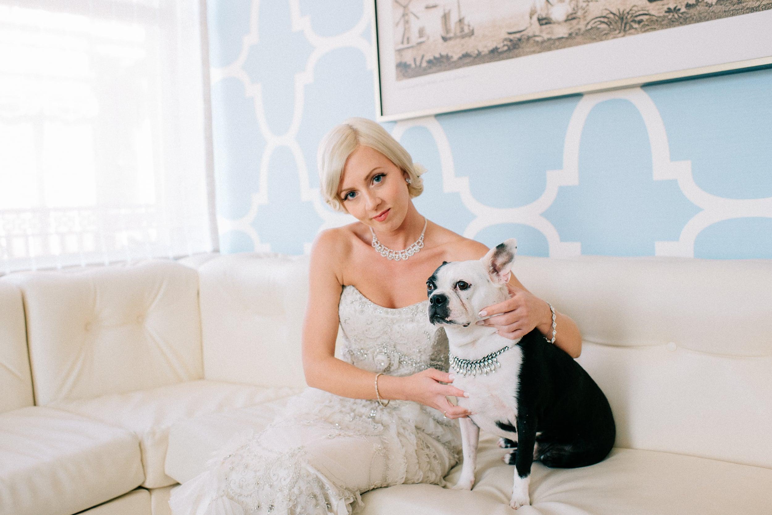 french-bulldog-wedding-photos