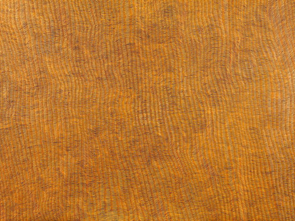YUKULTJI NAPANGATI,  born 1970,  Untitled,  2015, sold privately by D'Lan Davidson for  $80,000