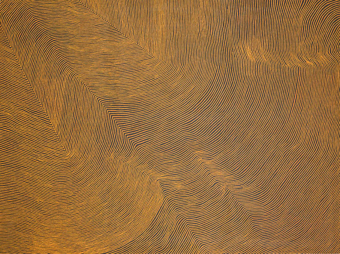 Warlimpirringa Tjapaltjarri,  Untitled  2007, sold for 167,000 GBP (A$286,471) at Sotheby's London, September 2016