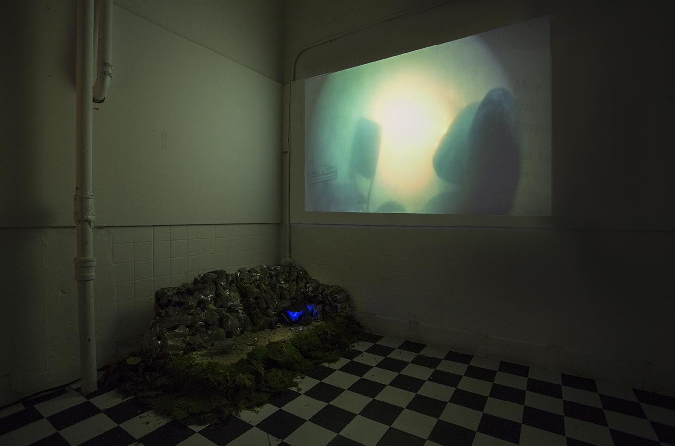 AQUACADE video installation at NIGHTSHIFT,Abrazo Interno Gallery, NY,NY