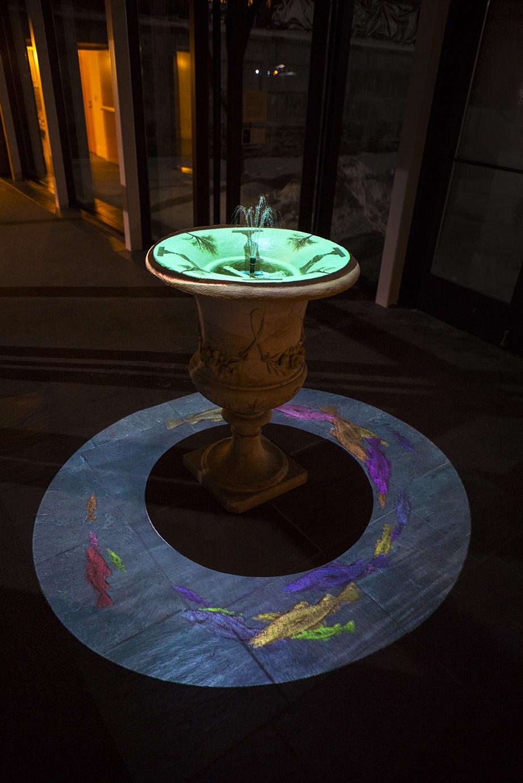 Illuminations at Fountain Elms