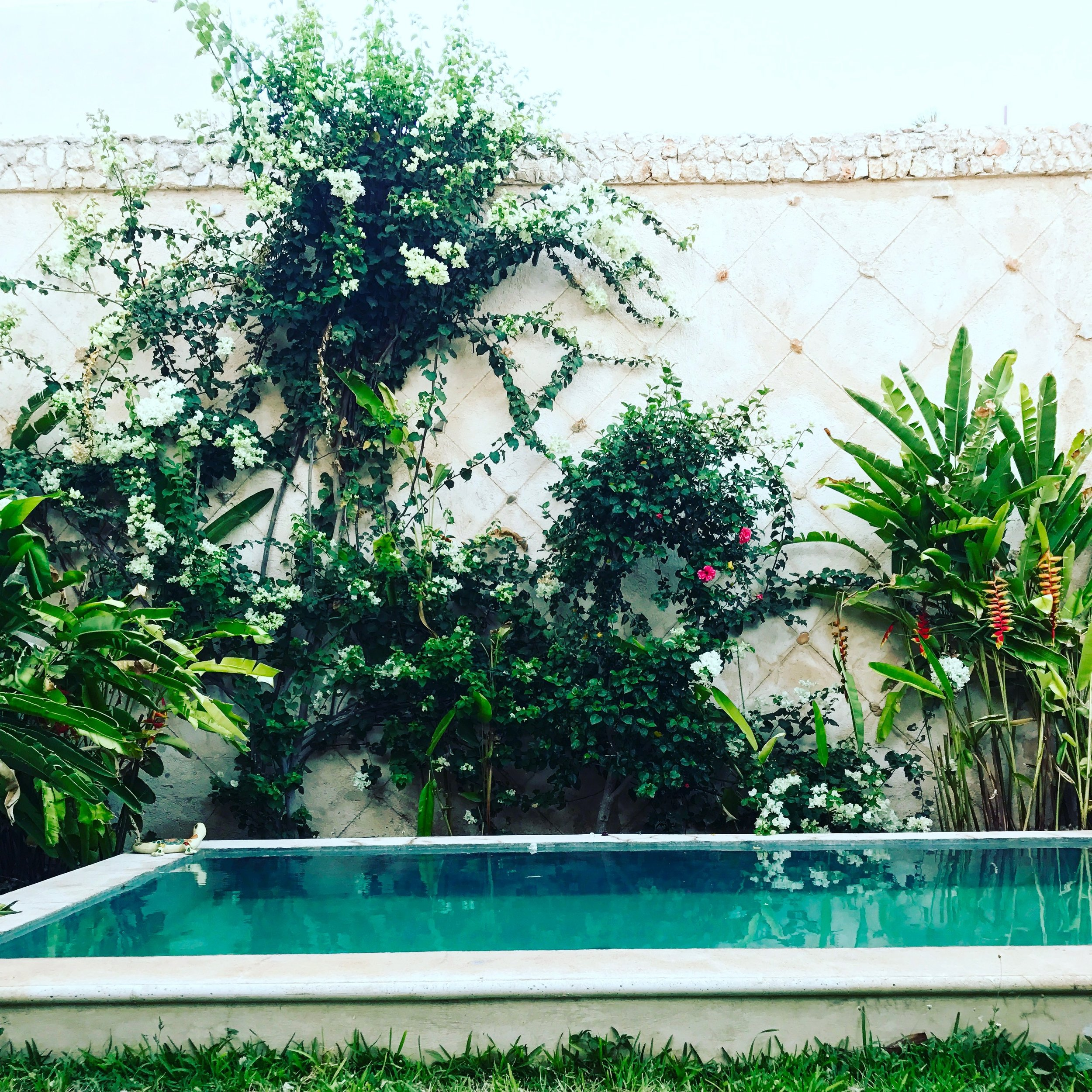 Beautiful pool at our rental in Merida, Mexico.
