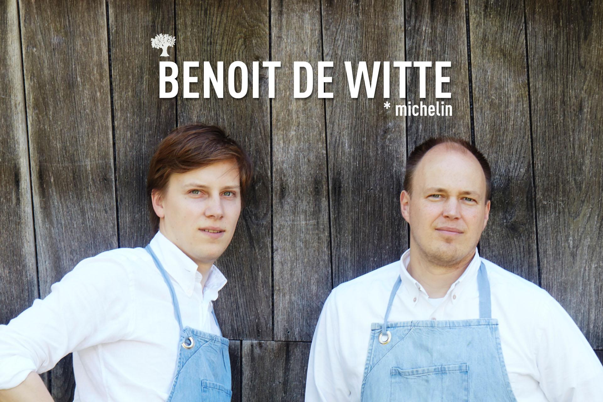 BANNER BENOIT DE WITTE.jpg