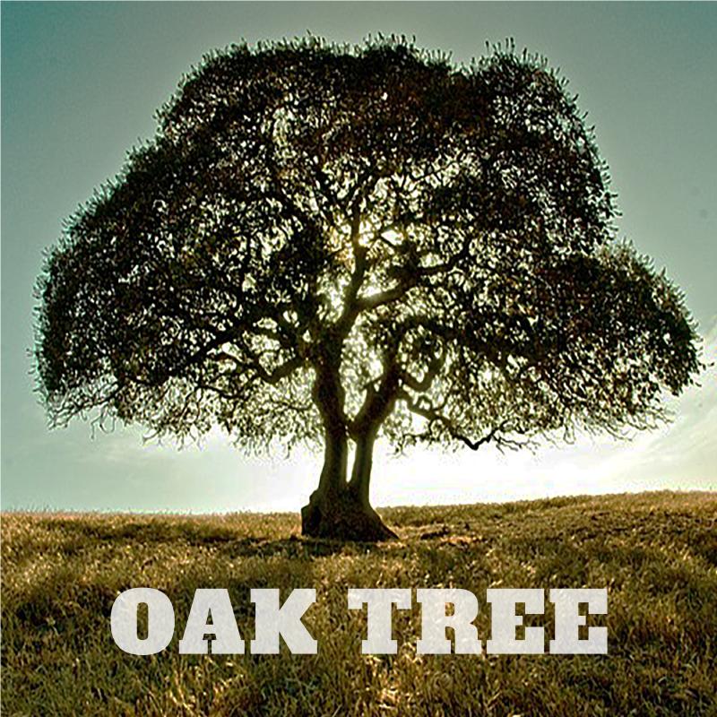 Oak Tree - Single - Available on iTunes – $0.99