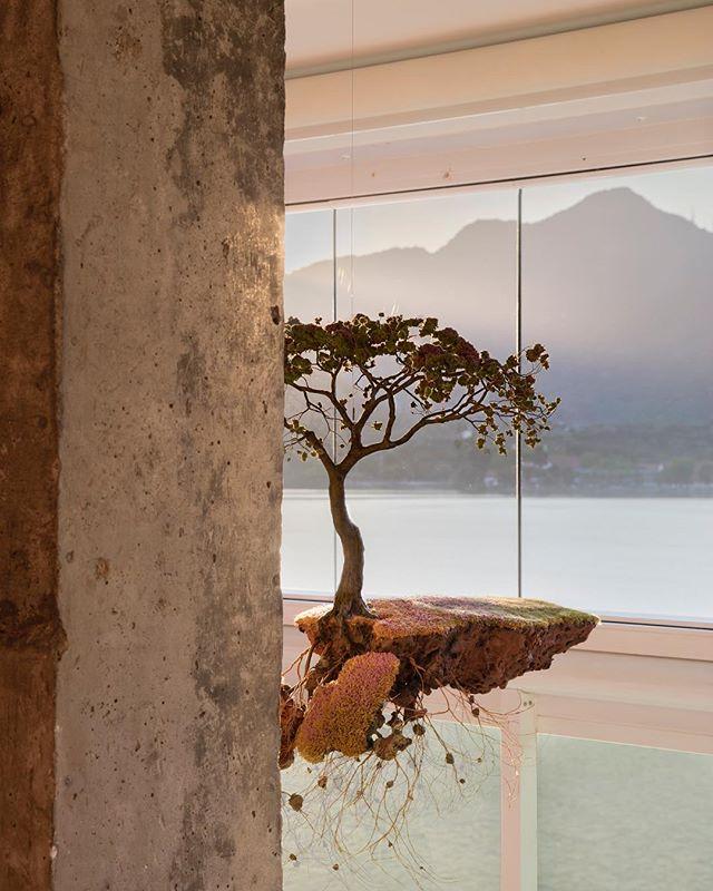 Obra de Jorge Mayet conversando com a vista da lagoa Rodrigo de Freitas - projeto @studioroca