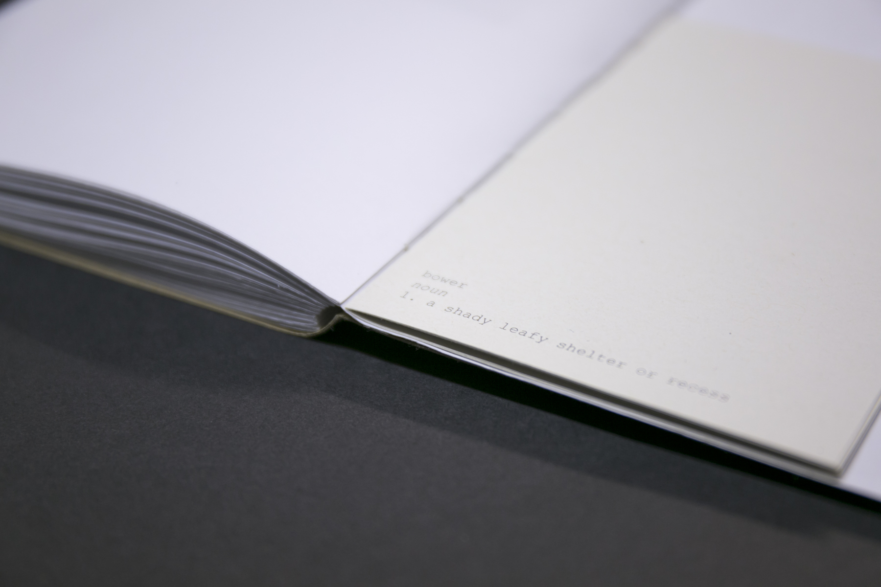 abowerforsisters-book-23.jpg