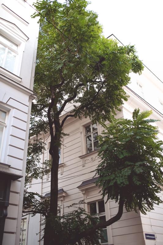 Green Vienna