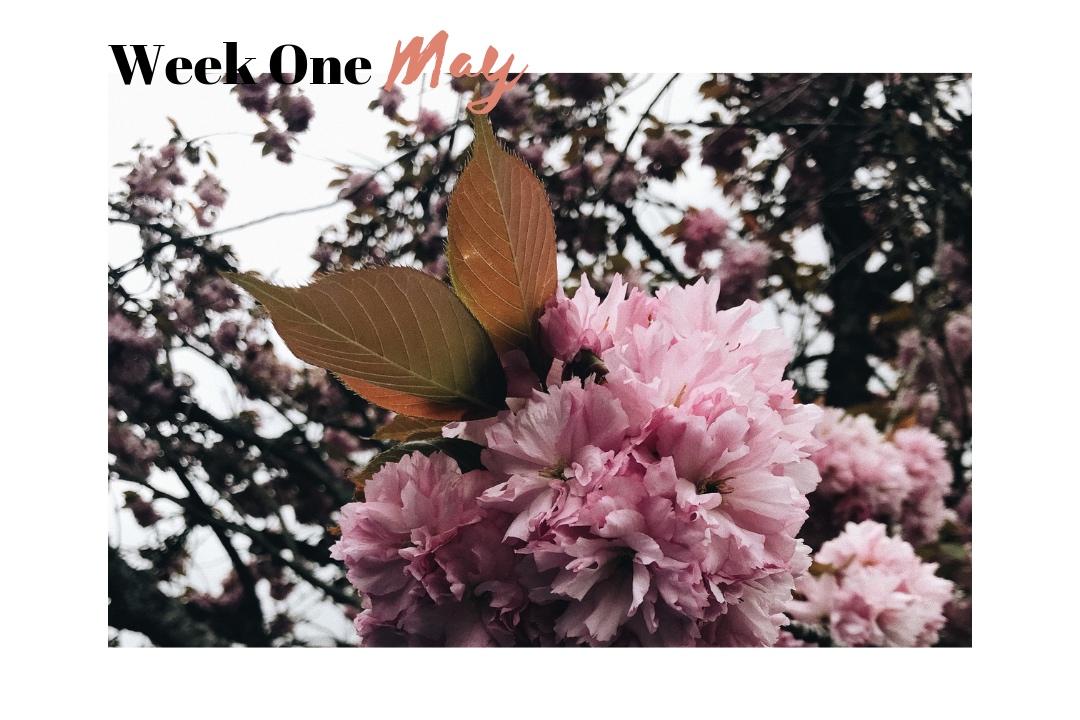 May+Week+One+Membership