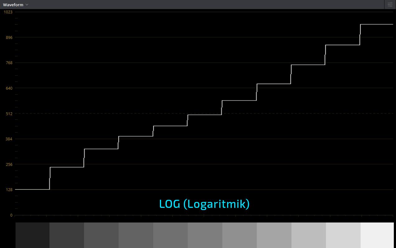 log scope.jpg