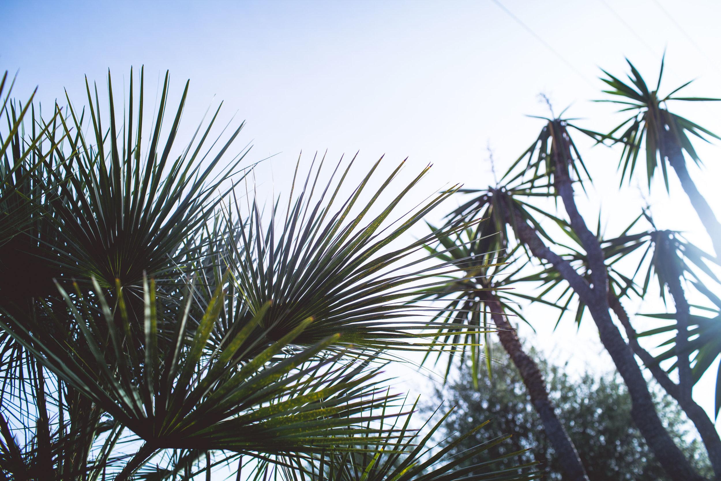 Mallorca-30.jpg