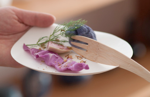 Earth-Friendly Biodegradable, compostable and made from 100% tree-free materials, WASARA is as good to the earth as it is to your culinary creations.