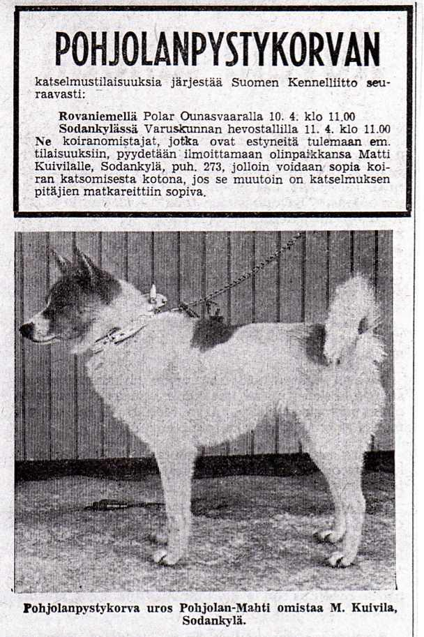 Newspaper ad. Courtesy of Traditional Spitz Association.
