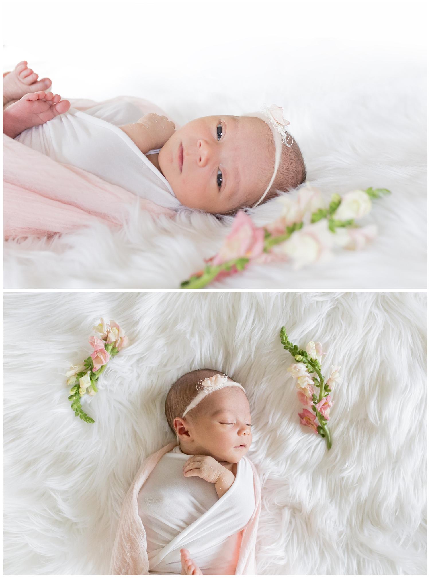 dana point newborn photography poppy lea