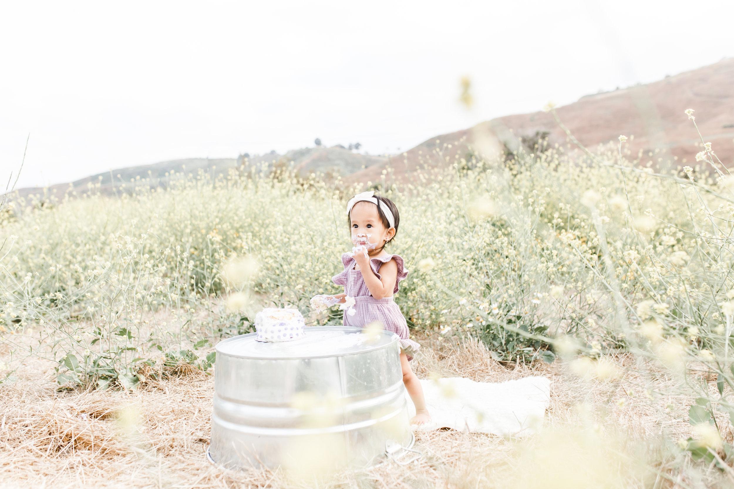 Dana PointInfant Photographer  ||  Field Cake Smash 1st birthday