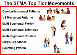 These are the basic movements to the SFMA.  From here more joint specific movements are used to diagnose the dysfunction at a micro level.