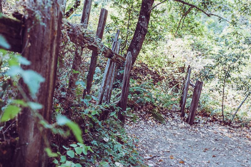 Los Trancos_San Andreas Fault Trail_USA-3.jpg