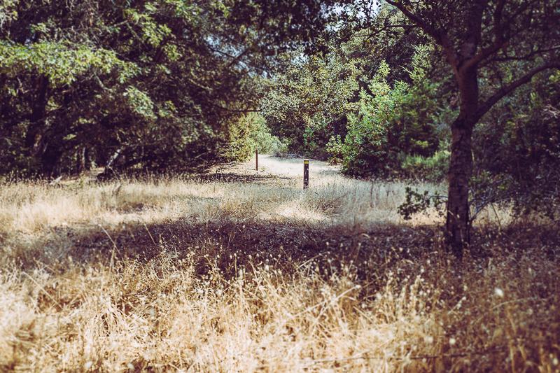 Los Trancos_San Andreas Fault Trail_USA-4.jpg
