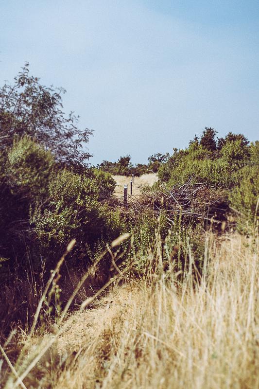 Los Trancos_San Andreas Fault Trail_USA-6.jpg