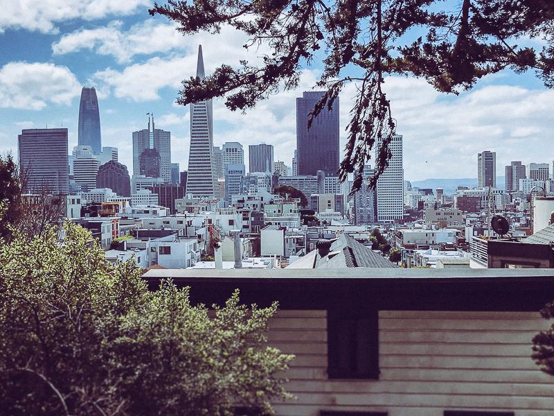 Coit Tower City View-4.jpg