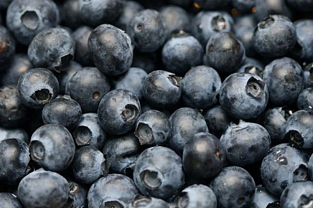 blueberries-background.jpg