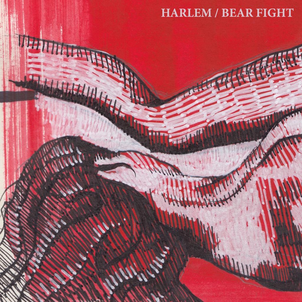 Harlem - Bear Fight