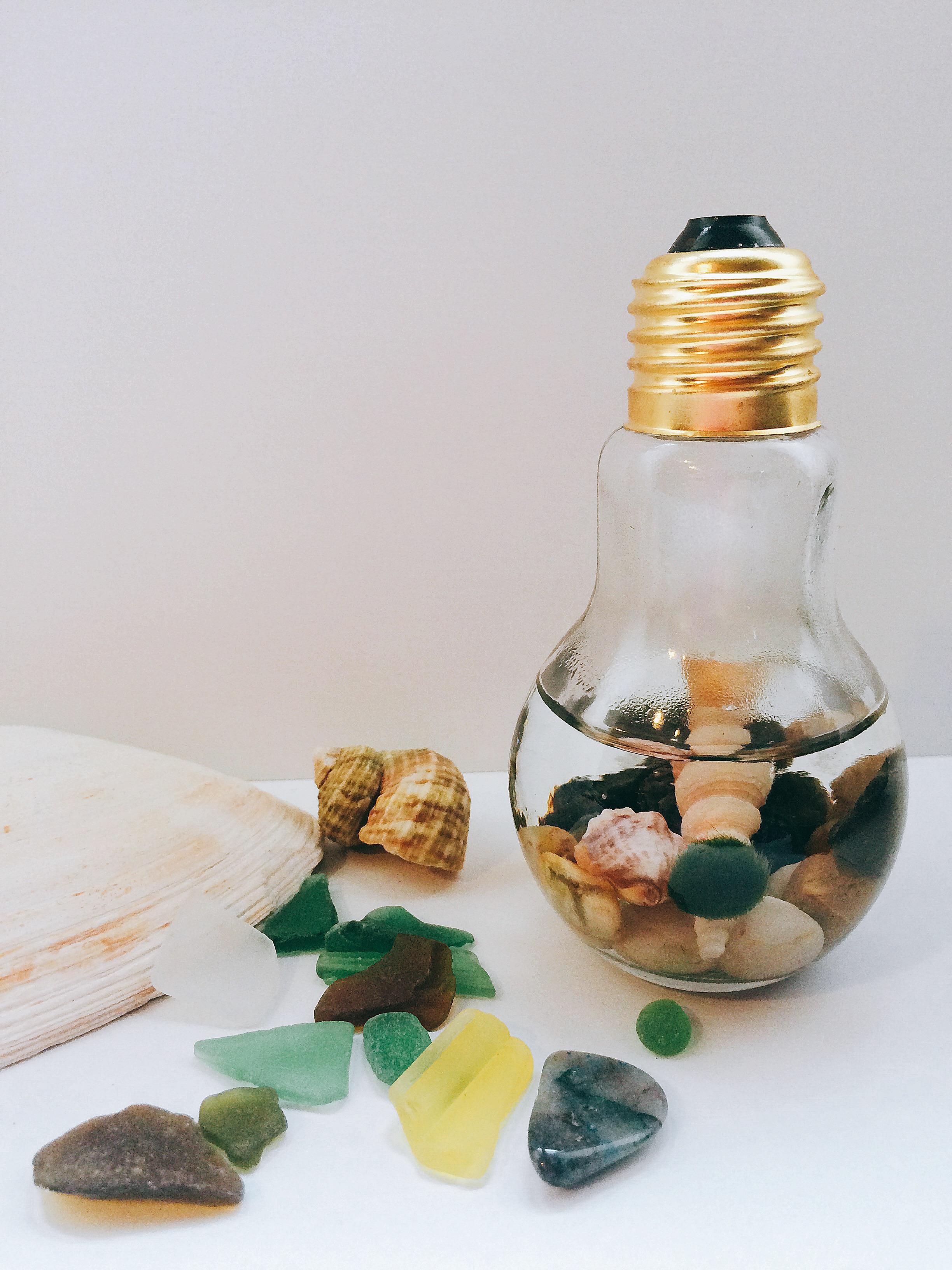 Marimo Moss Glass Jar