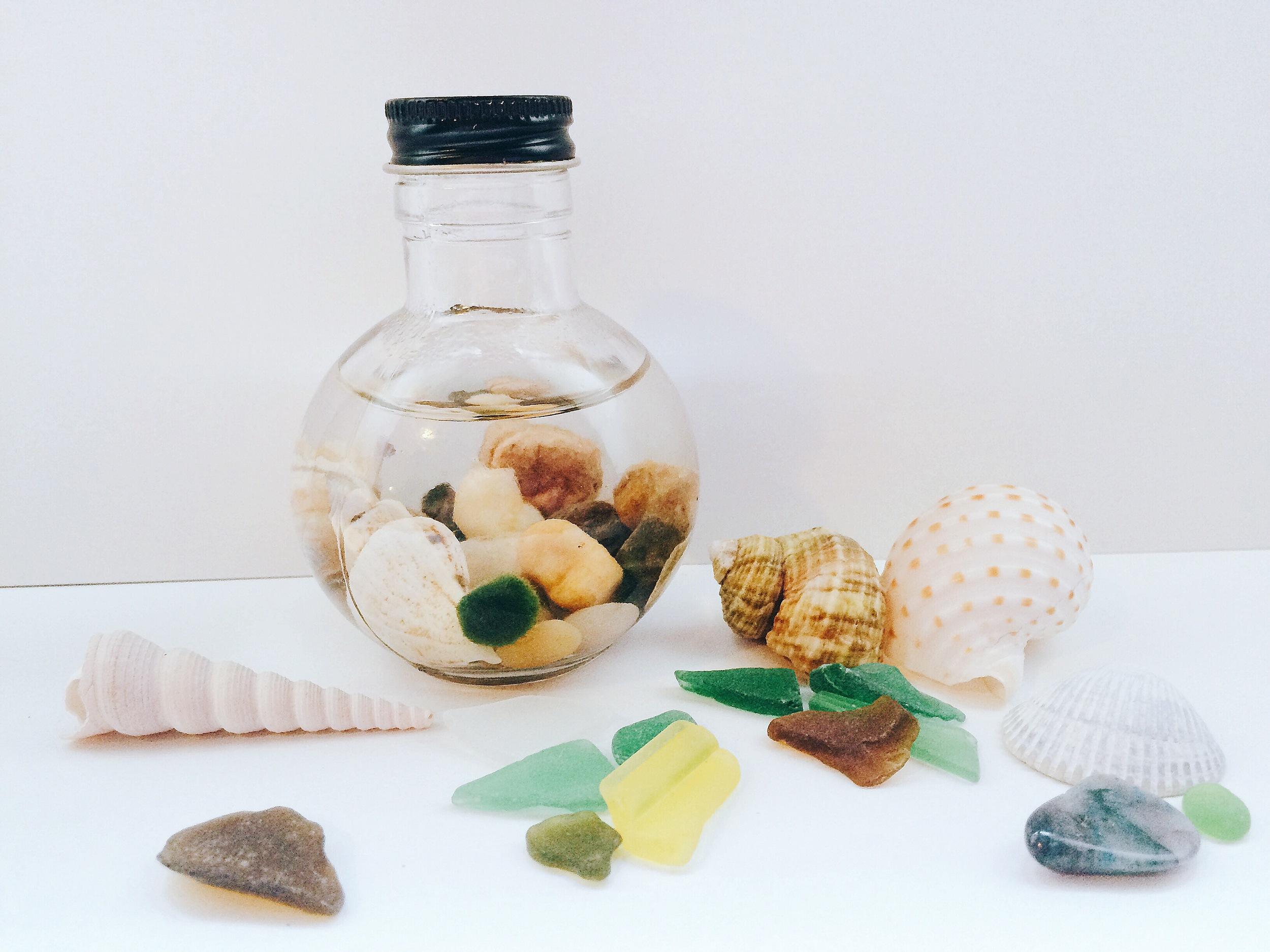 Marimo Moss Jar