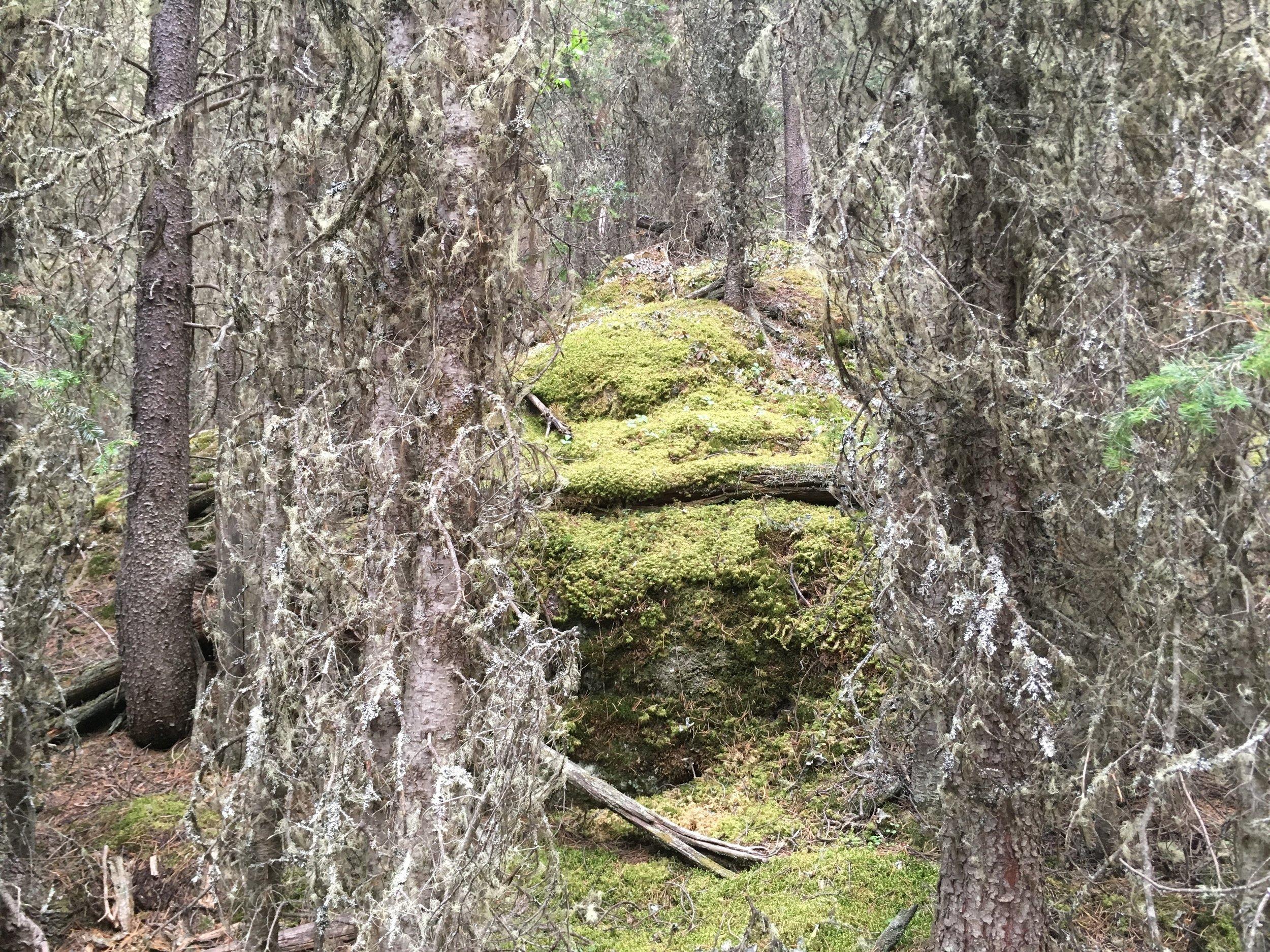 Stoney Squaw Banff