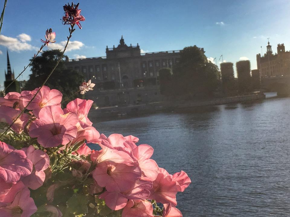 stockholm19.jpg