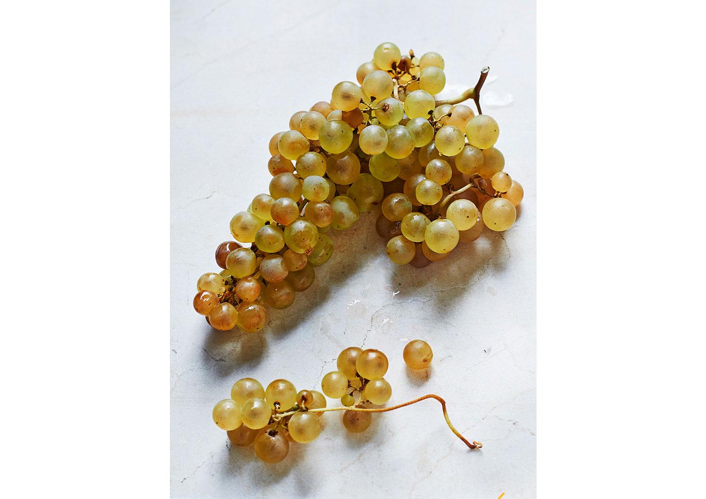 grapes-pale.jpg