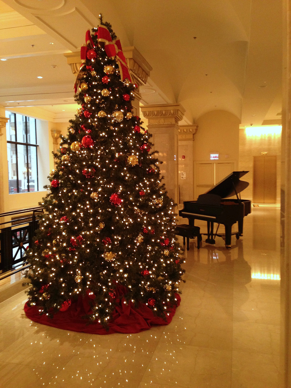 jw.christmas.tree.jpg