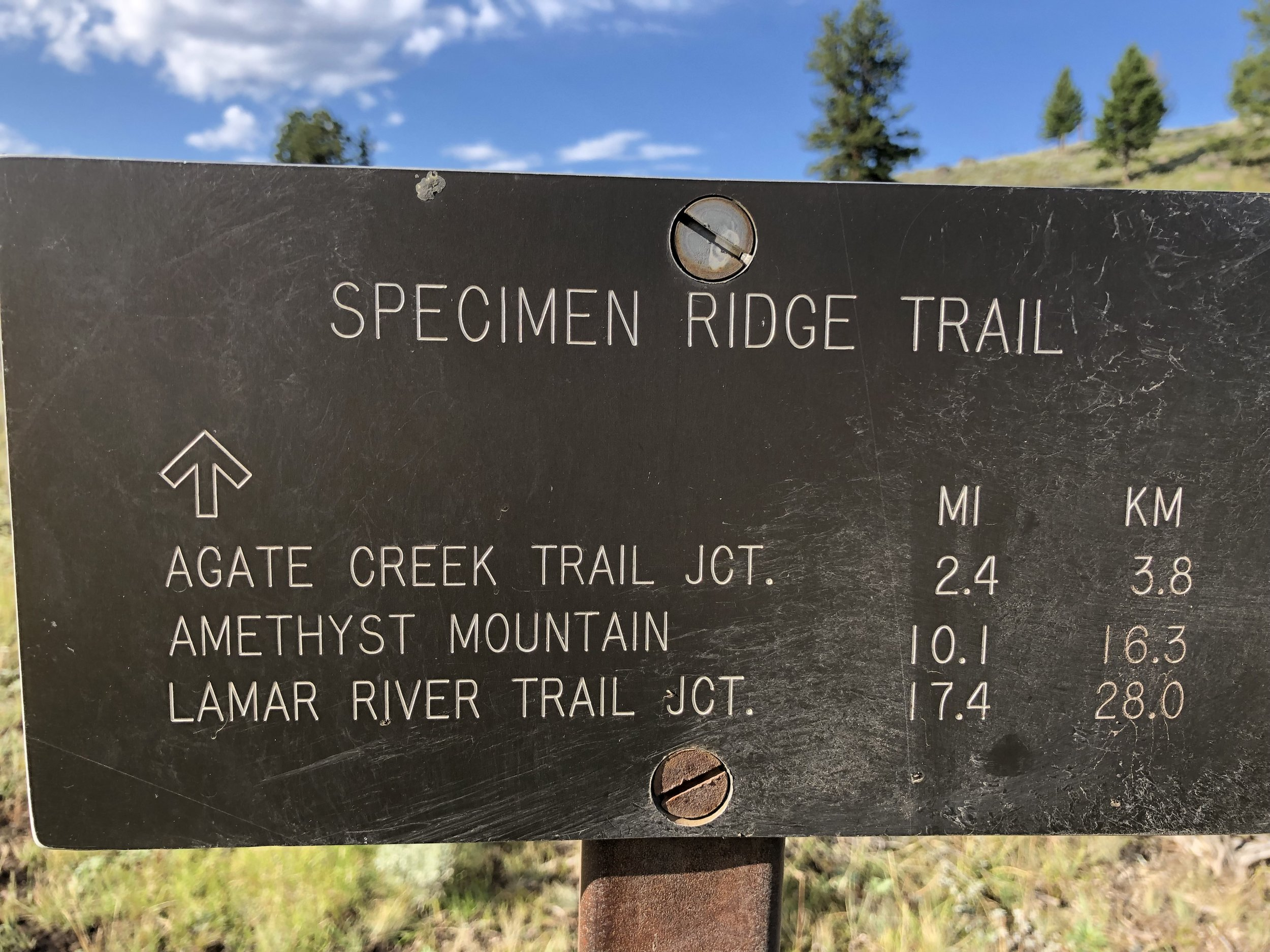 The Specimen Ridge Trail. Hardest, most adventurous and most fun hike I've ever done