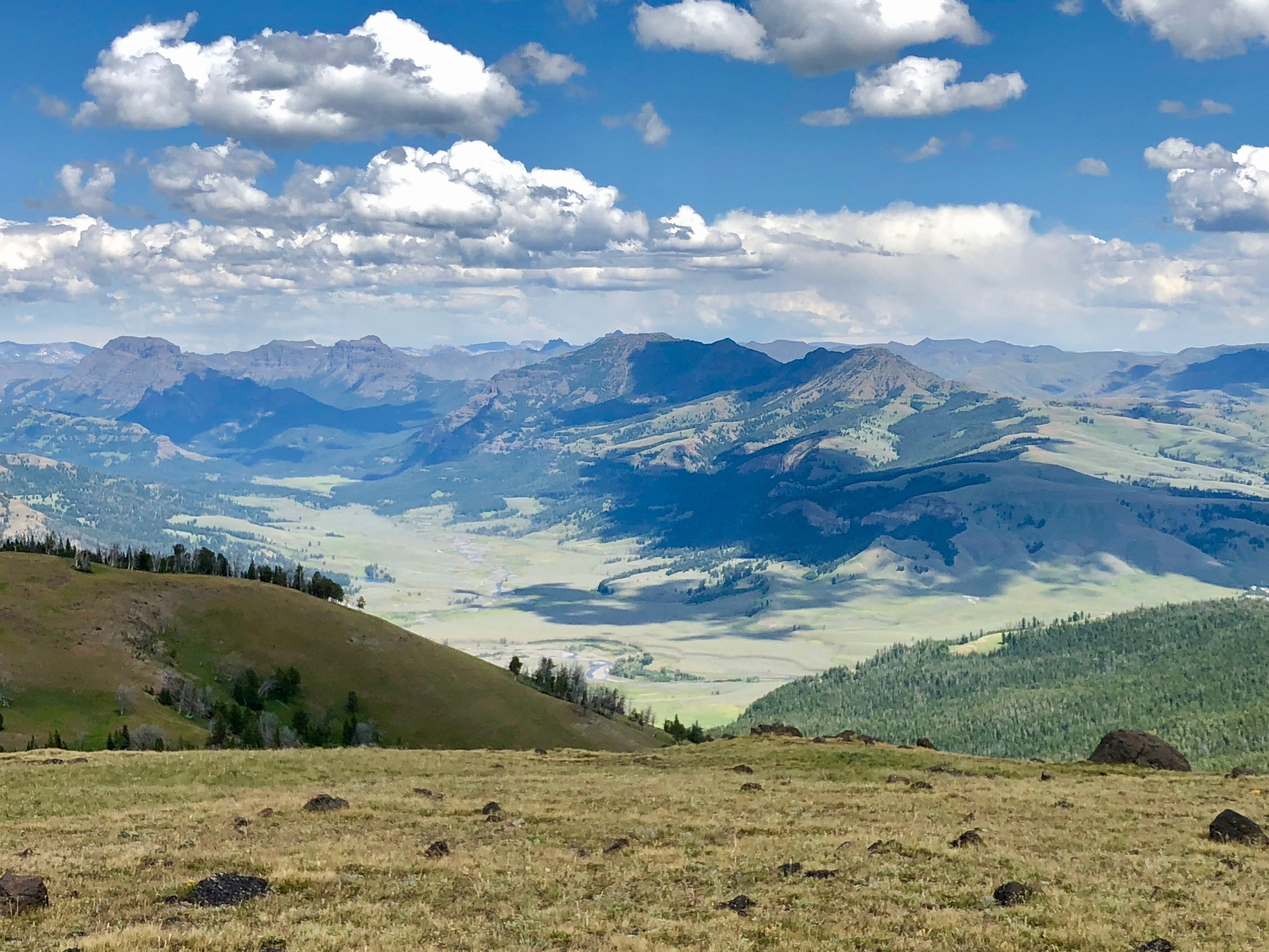 Freezing cold 80 mph winds. It felt like we were in a hurricane, but an amazing 360 degree vitsa. That's the Lamar Valley below, known as the Serengeti of Yellowstone, due to the abundance of wildlife