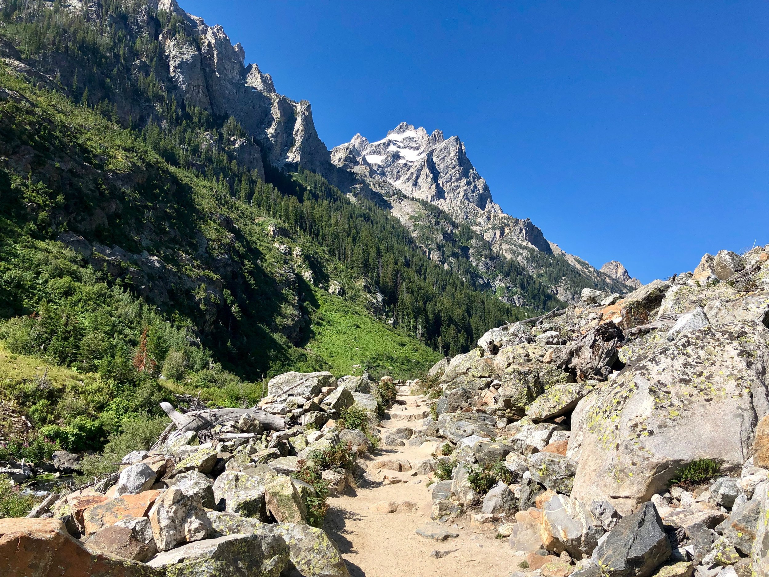 Another spur trail to Cascade Canyon