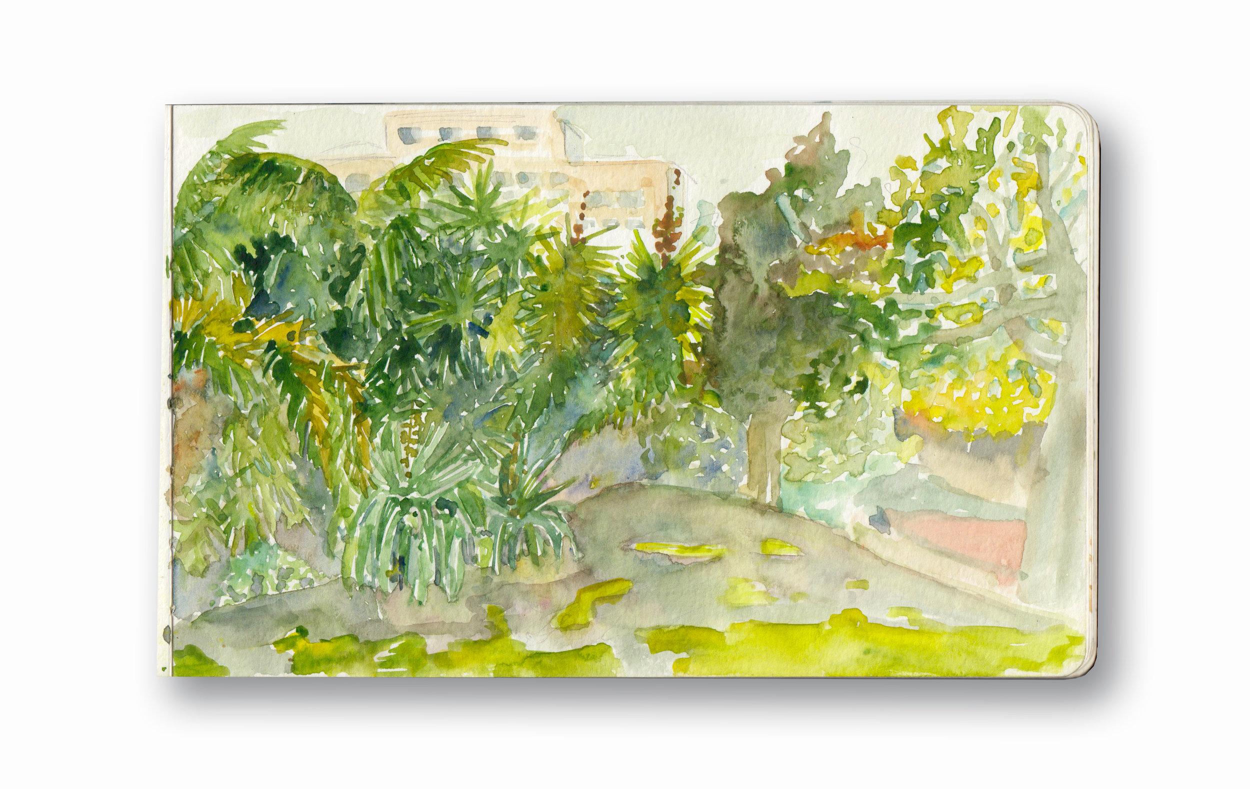 "Company's Gardens - Cape Town, SA  Watercolor & Gouache - MOleskine Sketchbook 5 x 8.25"""