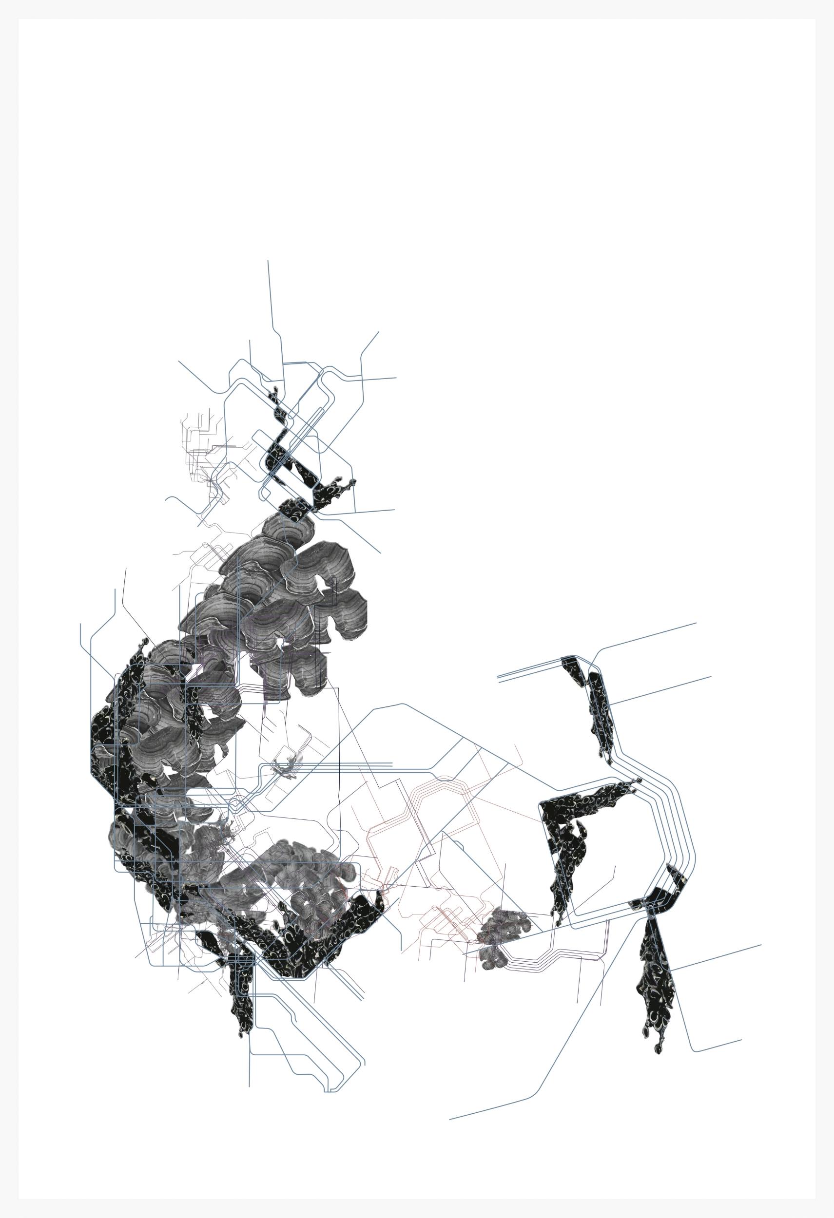 Public Transport , 2015.Illustrator (11x17).