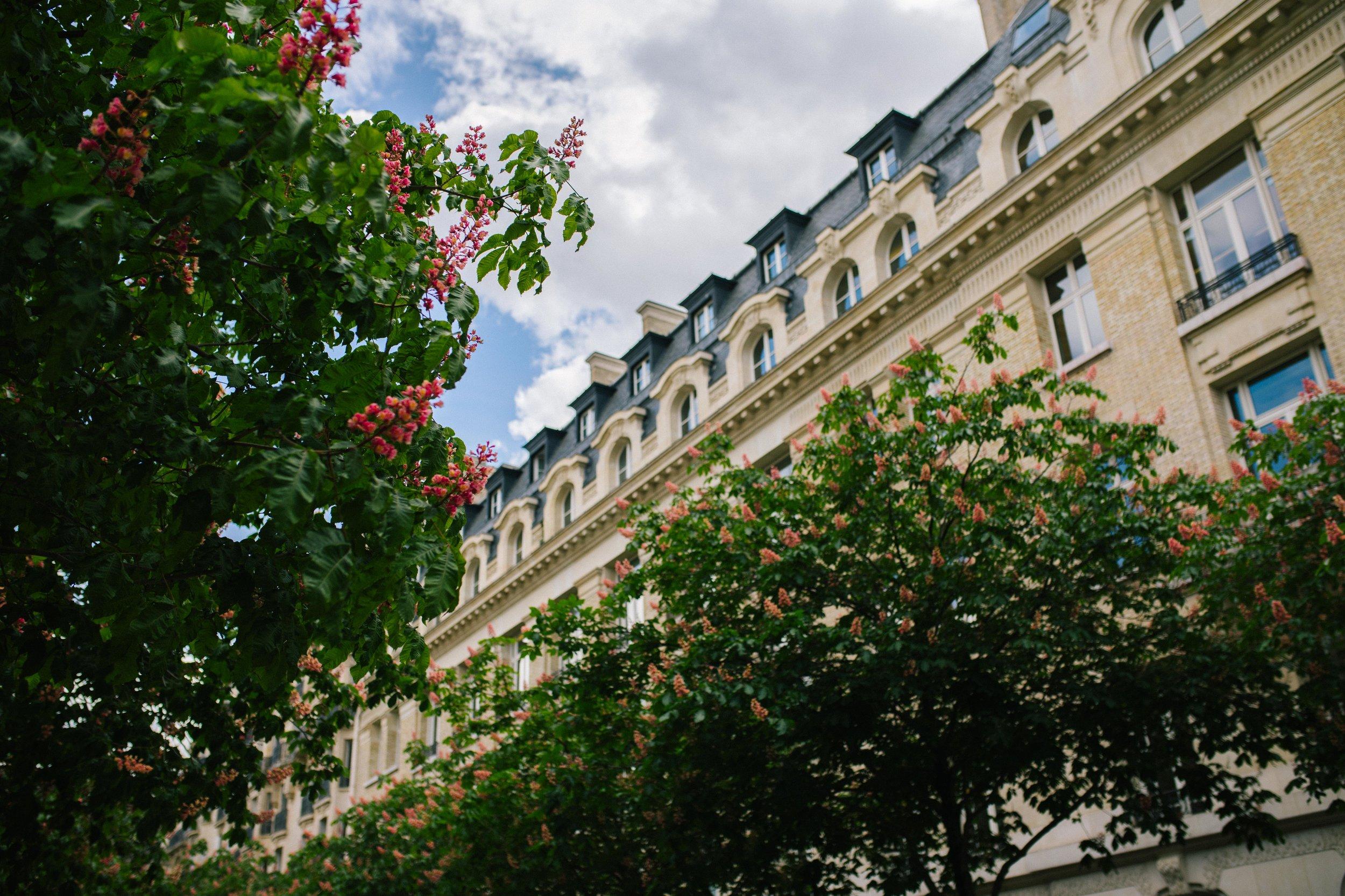 paris_april25_ (69 of 104).jpg