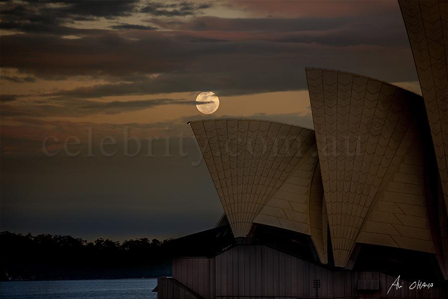 Supermoon over Sydney opera house 2016
