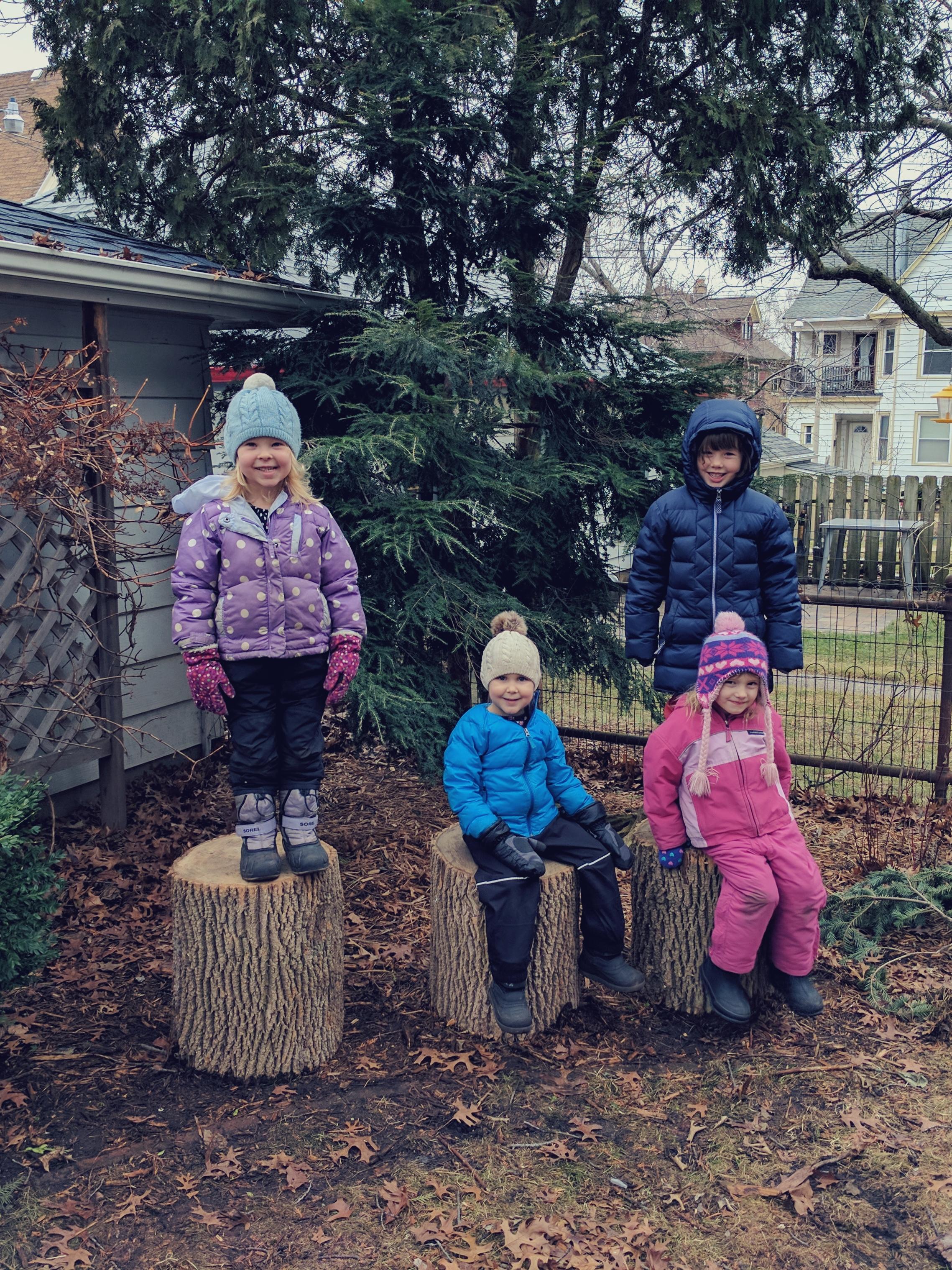 Nestling House Friends - January, 2017