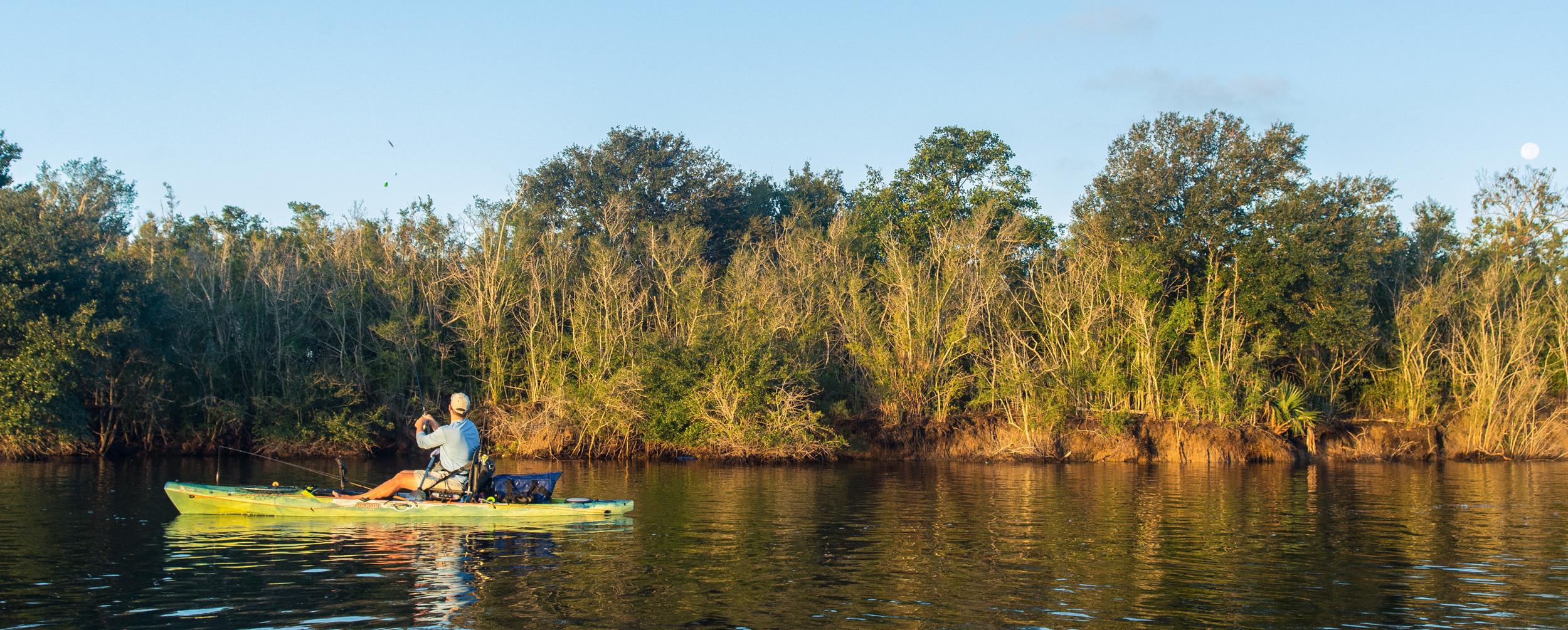 Photo: Josh Reppel,  Wild Louisiana Tours