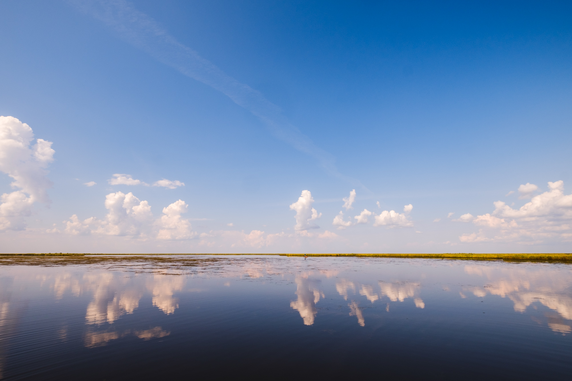 Water and reflections on the marsh, Scott Myers Photography